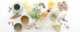 home flea remedies